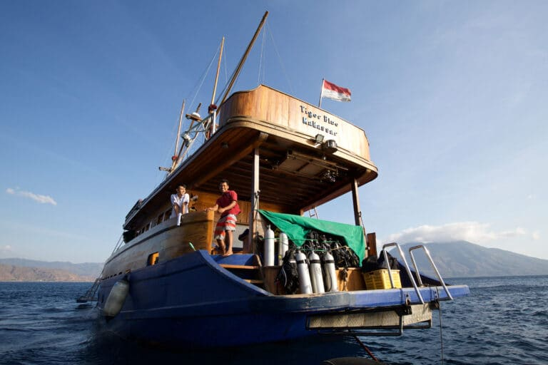Luxury Phinisi Yacht TIGER BLUE diving